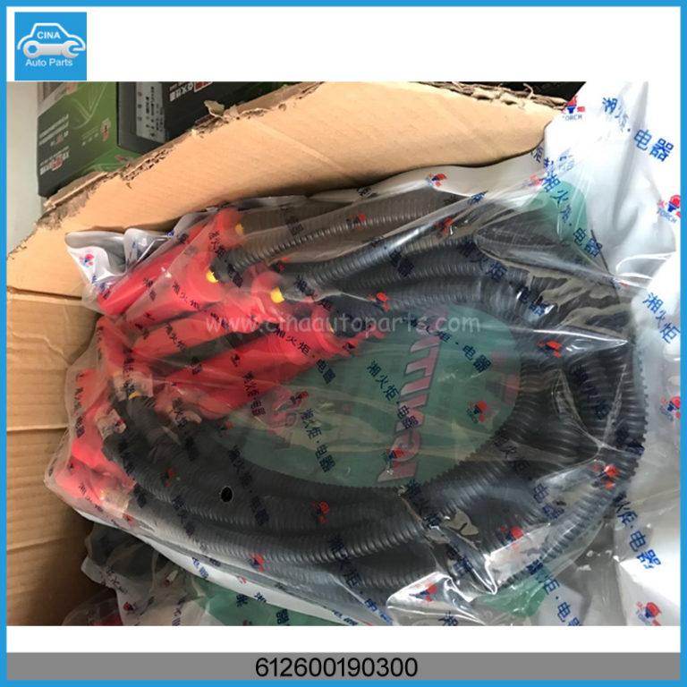 612600190300 768x768 - Weichai natural gas engine WP10 high voltage line,612600190300