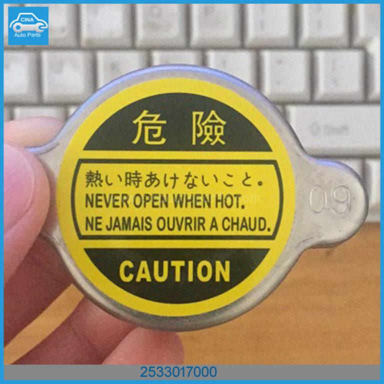 25330 17000 768x768 - Hyundai / KIA CAP ASSY-RADIATOR OEM 2533017000